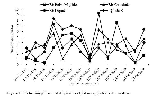 Fluctuación poblacional del picudo del plátano según fecha de muestreo.